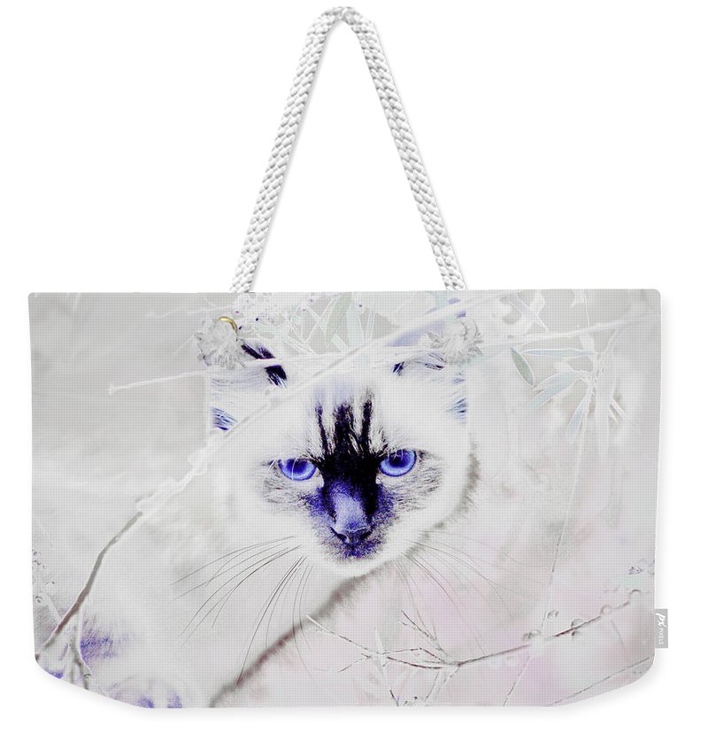 Animals Weekender Tote Bag featuring the photograph Spellbound by Holly Kempe