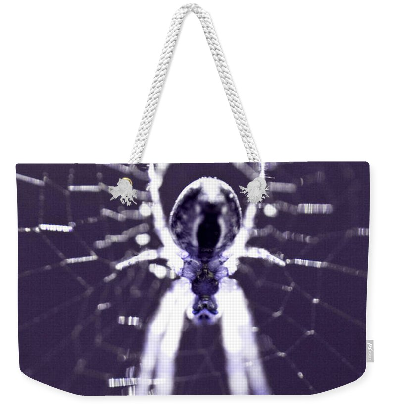 Spider Weekender Tote Bag featuring the photograph Spider by Danielle Silveira