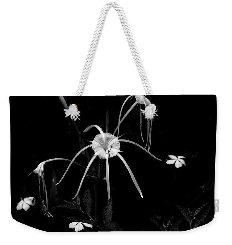 African Spider Lily Weekender Tote Bag featuring the photograph Spider Lily by Aidan Moran