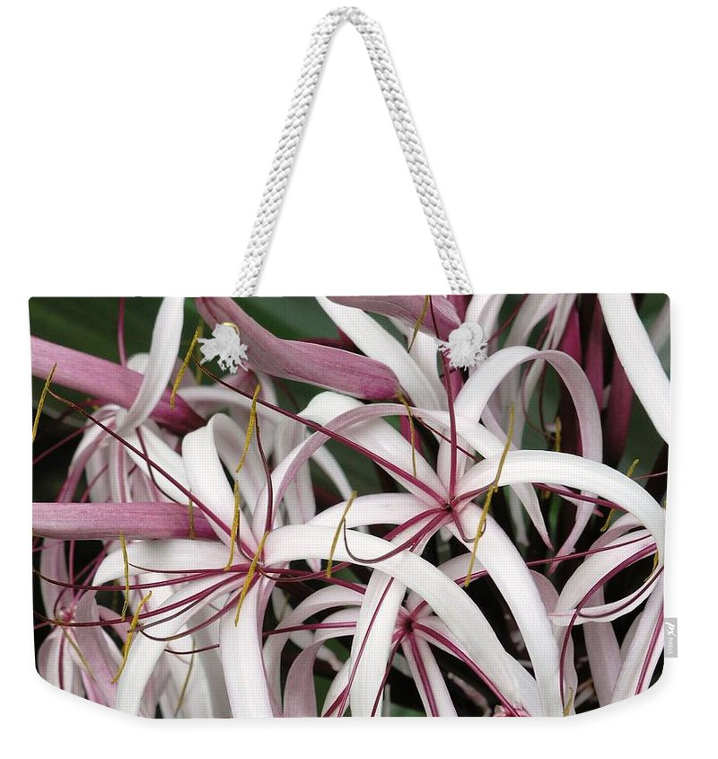 Lily Weekender Tote Bag featuring the photograph Spider Lily by Mary Deal