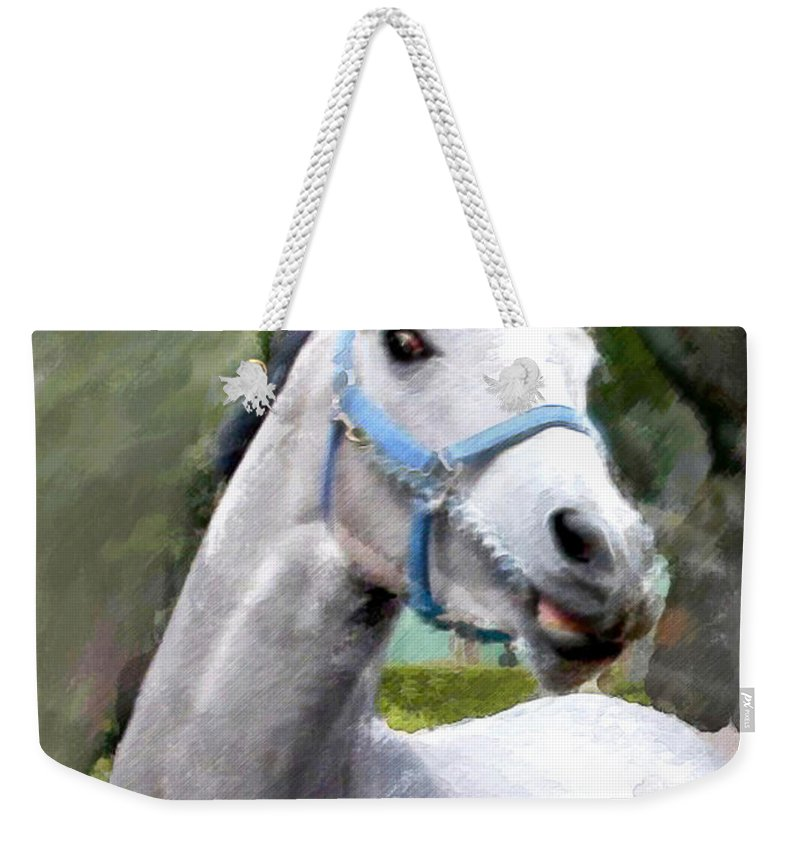 Horse Weekender Tote Bag featuring the painting Spirited Grey Horse by Elaine Plesser