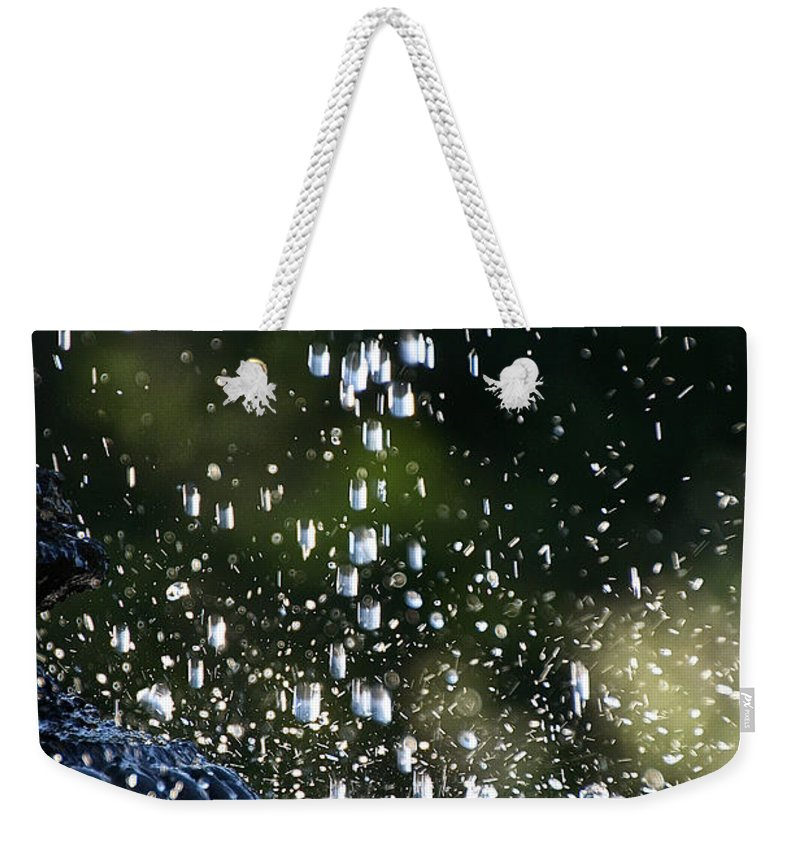 Garden Weekender Tote Bag featuring the photograph Splashing by Susan Herber