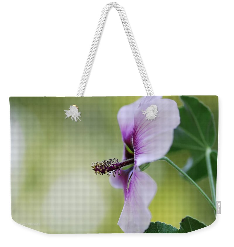 Flower Weekender Tote Bag featuring the photograph Splendor by Donna Blackhall