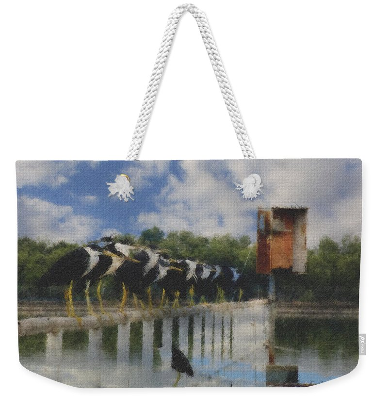 Pied Herons Weekender Tote Bag featuring the photograph Spot The Odd One Out V2 by Douglas Barnard