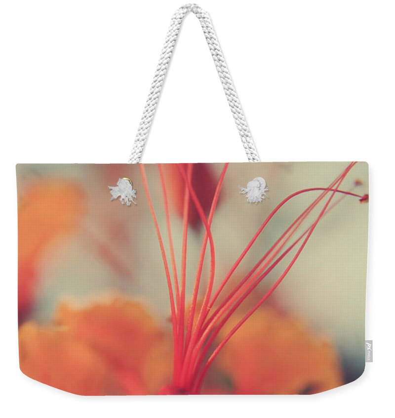 Flowers Weekender Tote Bag featuring the photograph Spread The Love by Laurie Search