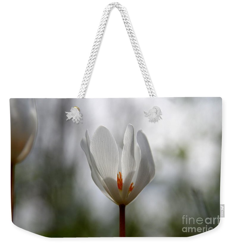 Flower Weekender Tote Bag featuring the photograph Spring Bloom by Neal Eslinger