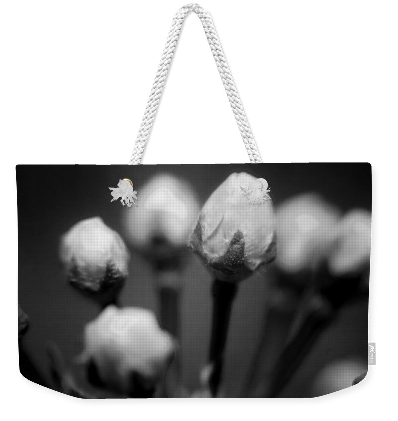 Flowers Weekender Tote Bag featuring the photograph Spring Blooms 6703 by Timothy Bischoff