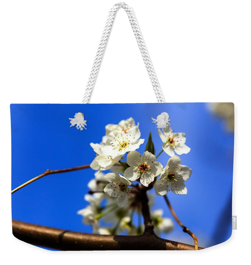 Blue Weekender Tote Bag featuring the photograph Spring Blossoms by Sennie Pierson