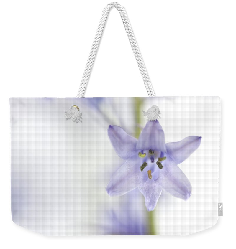 Blue Bell Weekender Tote Bag featuring the photograph Spring Bluebells by Carol Leigh
