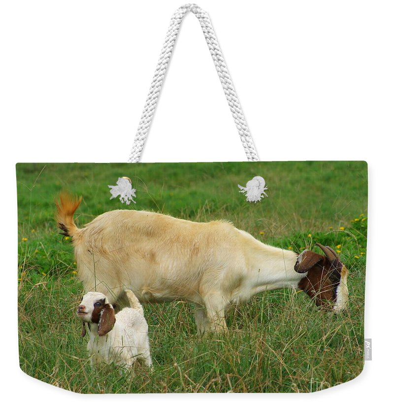 White Weekender Tote Bag featuring the photograph Spring Born by Mary Deal