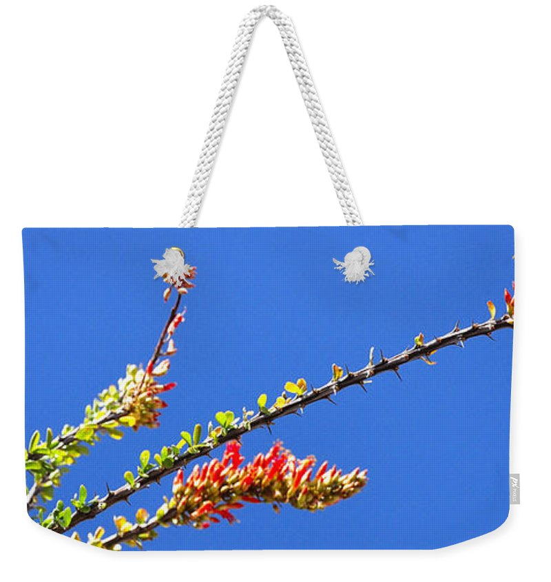 Spring Weekender Tote Bag featuring the photograph Spring Buds 32815 by Jerry Sodorff