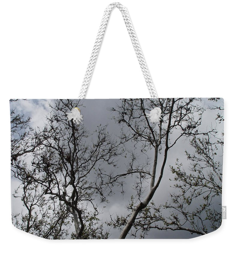 Nature Weekender Tote Bag featuring the photograph Spring Clouds by Noa Mohlabane