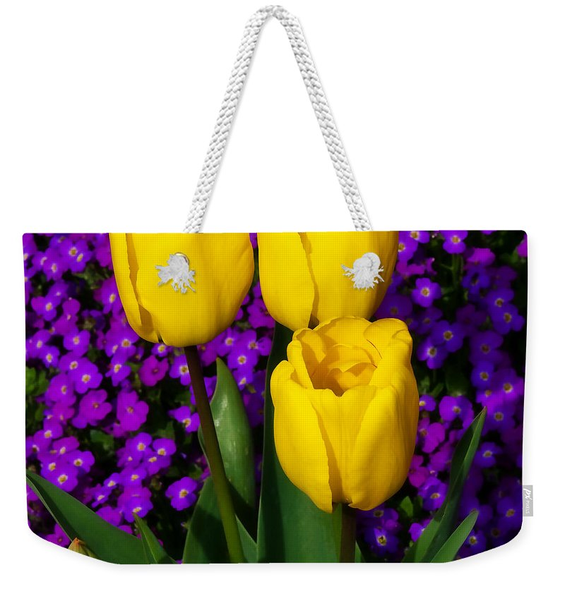 Spring Weekender Tote Bag featuring the photograph Spring Colours by Susie Peek