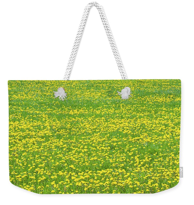Maine Farmland Weekender Tote Bag featuring the photograph Spring Farm Panorama With Dandelion Bloom In Maine Canvas Poster Print by Keith Webber Jr