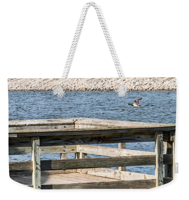 Wildlife Weekender Tote Bag featuring the photograph Spring Flight by Edward Peterson