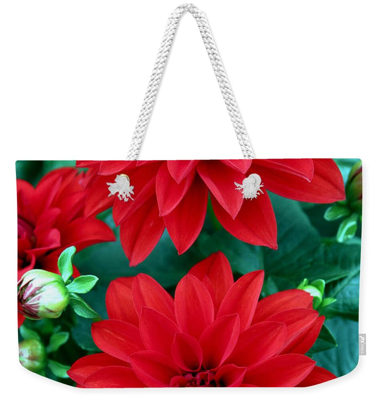 Spring Weekender Tote Bag featuring the photograph Spring Flowers 5 by Bob Slitzan