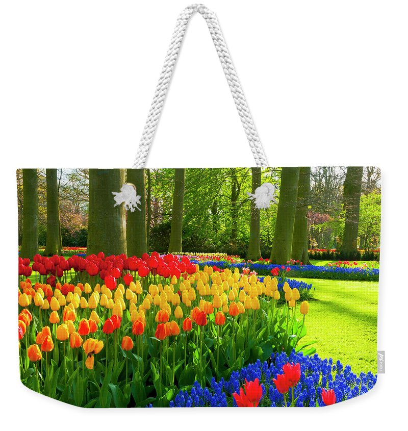 Flowerbed Weekender Tote Bag featuring the photograph Spring Flowers In A Park by Jacobh
