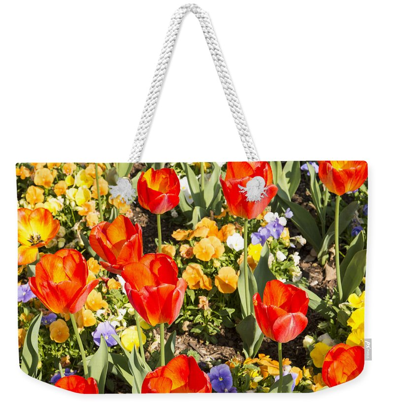 Spring Flowers Weekender Tote Bag featuring the photograph Spring Flowers No. 5 by Greg Hager