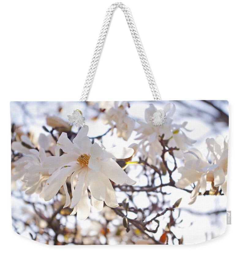 Magnolia Stellata Weekender Tote Bag featuring the photograph Spring Flowers by Sharon Popek