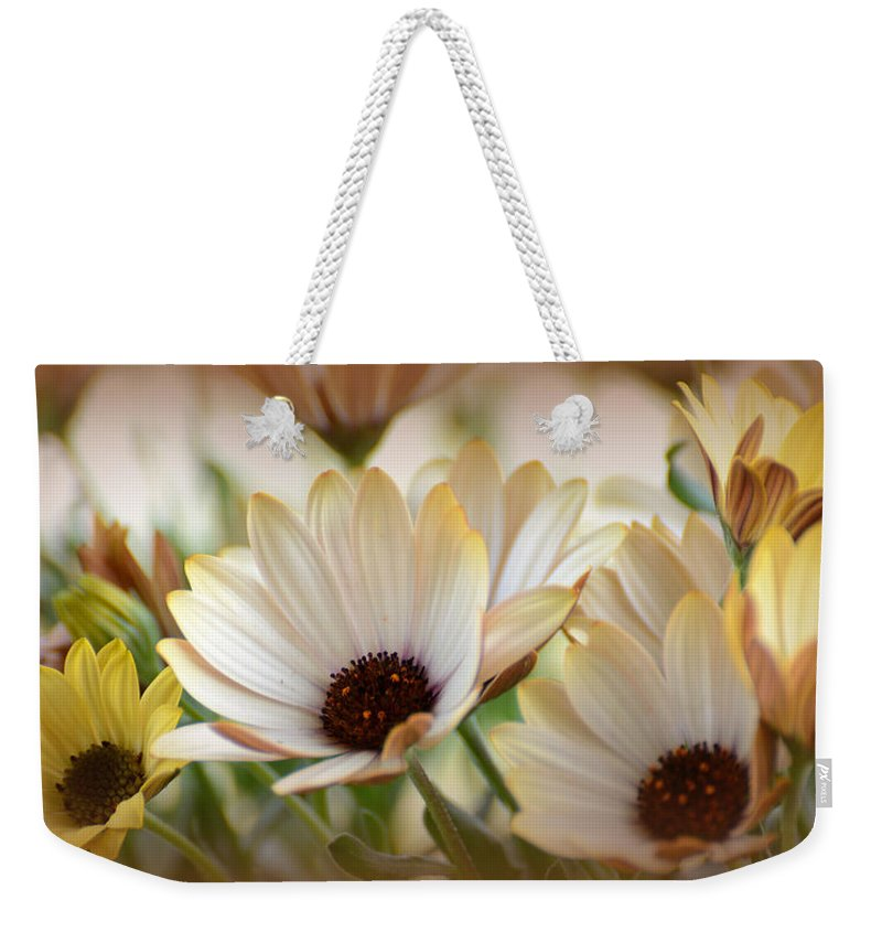 Spring Flowers Weekender Tote Bag featuring the photograph Spring Flowers by Todd Hostetter