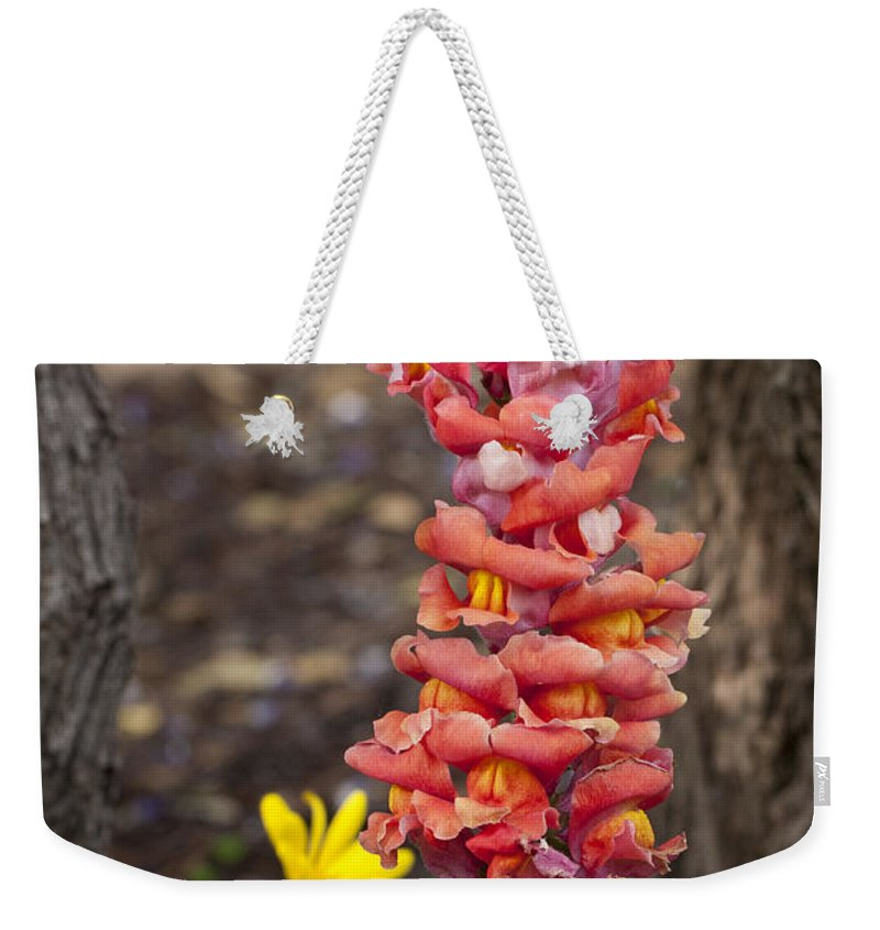 Wildflowers Weekender Tote Bag featuring the photograph Spring Framed by Erika Weber