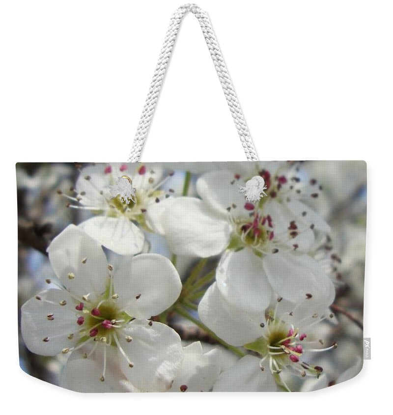 Blossoms Weekender Tote Bag featuring the photograph Spring Gala by Annie Adkins