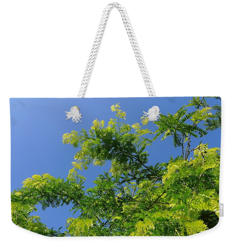 Spring Green Weekender Tote Bag featuring the photograph Spring Green by Denise Mazzocco