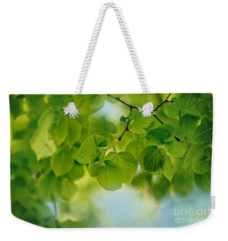 Tree Weekender Tote Bag featuring the photograph Spring Green by Nailia Schwarz