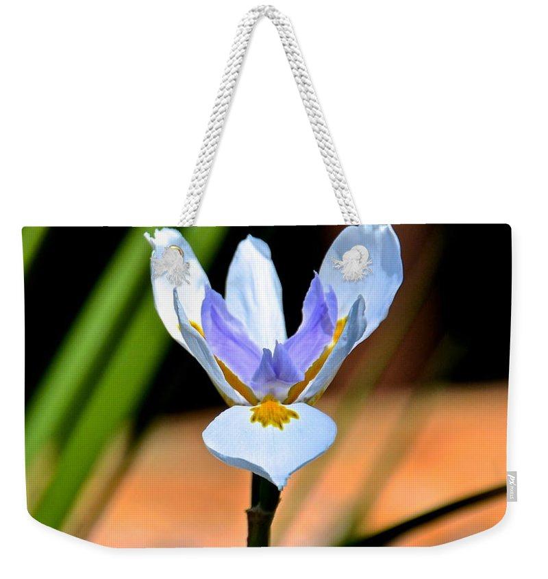 Iris Weekender Tote Bag featuring the photograph Spring Iris by Carol Bradley