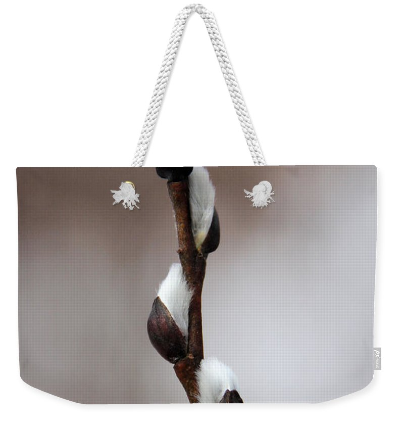 Pussy Willow Weekender Tote Bag featuring the photograph Spring Is Coming - Slowly by Doris Potter