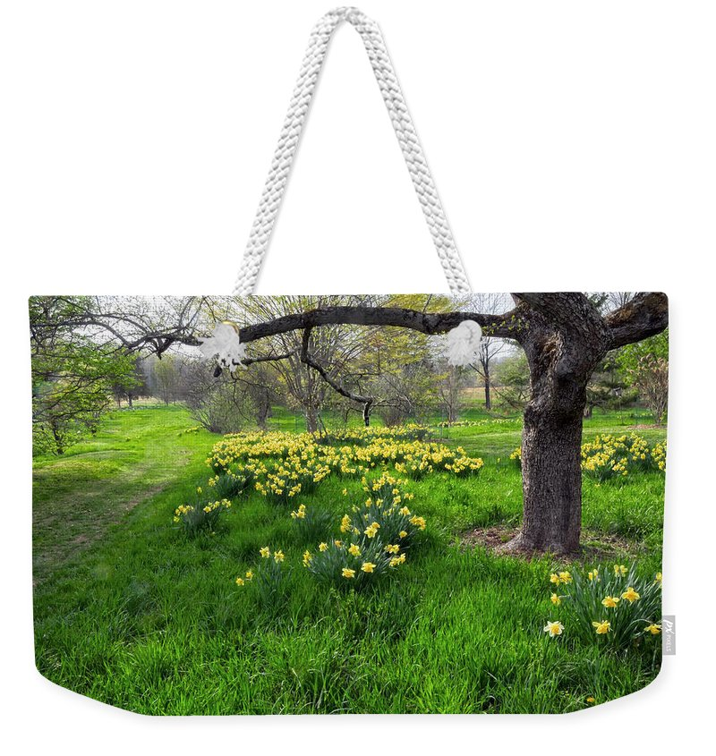 Spring Weekender Tote Bag featuring the photograph Spring Is Here by Dave Mills
