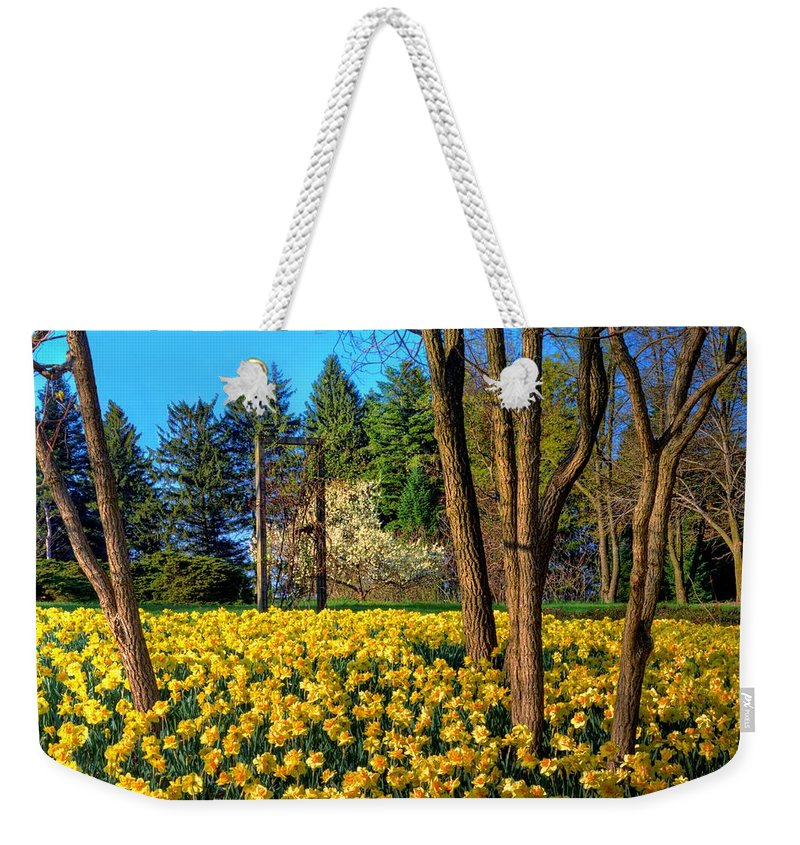 Yellow Weekender Tote Bag featuring the photograph Spring Is In The Air by John Absher