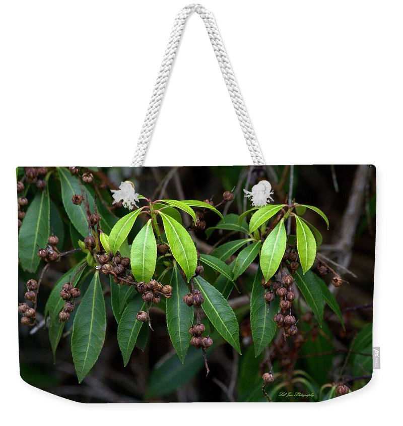 Greenery Weekender Tote Bag featuring the photograph Spring Is Nigh by Jeanette C Landstrom