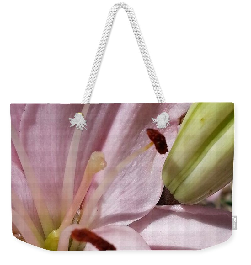 Pink Weekender Tote Bag featuring the photograph Spring Lily Pink by Caryl J Bohn