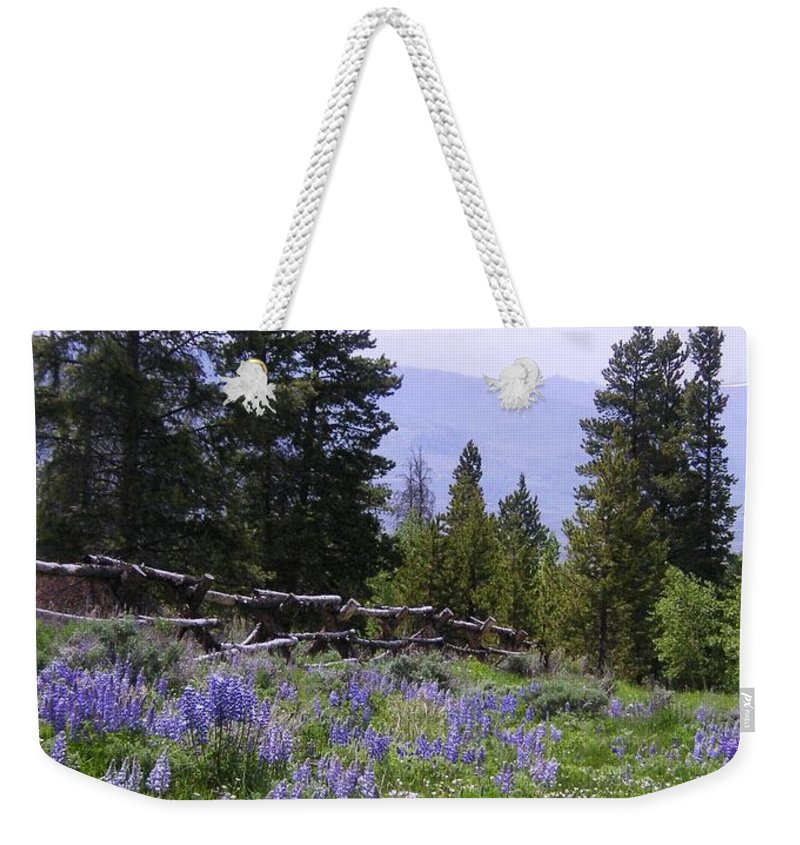 Mountains Weekender Tote Bag featuring the photograph Spring Mountain Lupines by Crystal Miller