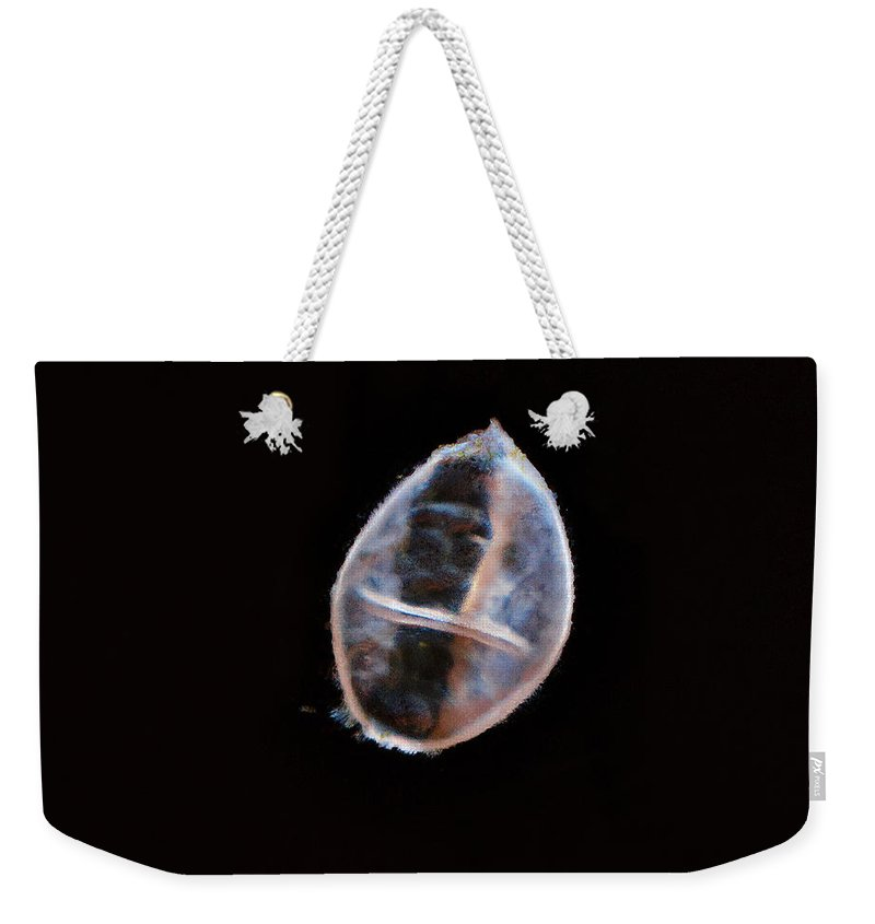 Lehto Weekender Tote Bag featuring the photograph Spring Of Life by Jouko Lehto