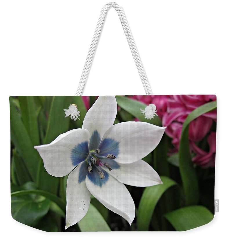White Flower Weekender Tote Bag featuring the photograph Spring Star by MTBobbins Photography