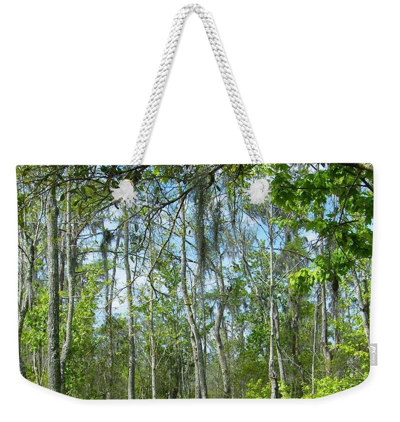 Sawmp Weekender Tote Bag featuring the photograph Spring Swamp by Lizi Beard-Ward