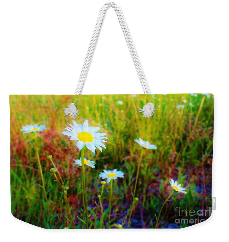 Daisy Weekender Tote Bag featuring the photograph Springing Daisy's by Keri West