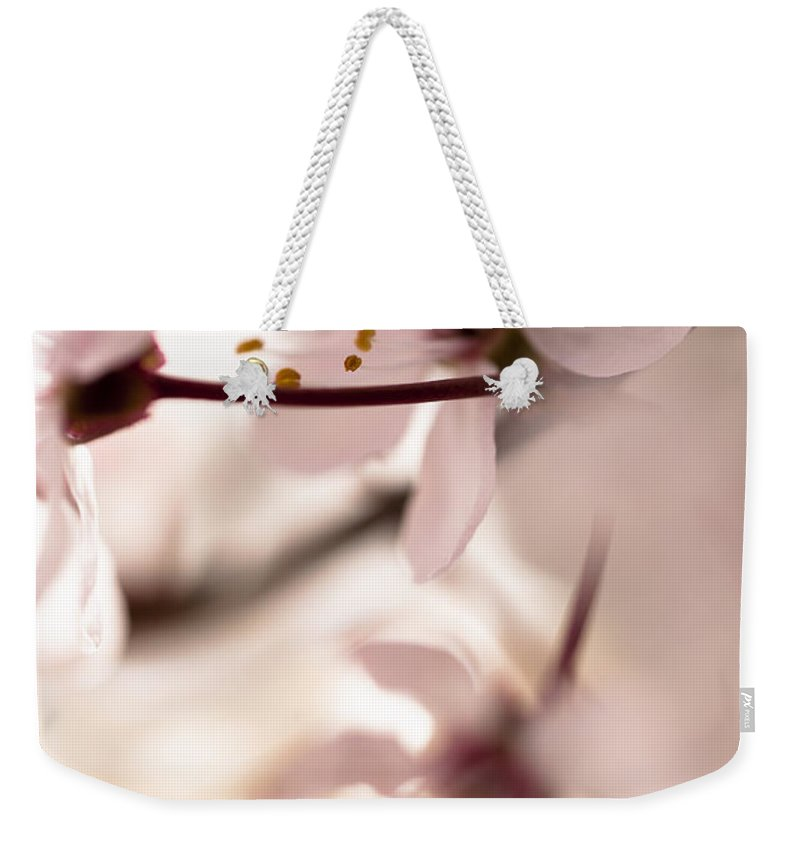 Cherry Blossom Weekender Tote Bag featuring the photograph Springtime Blossom by Jan Bickerton