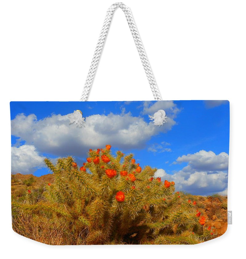 Landscape Weekender Tote Bag featuring the photograph Springtime In Arizona by James Welch