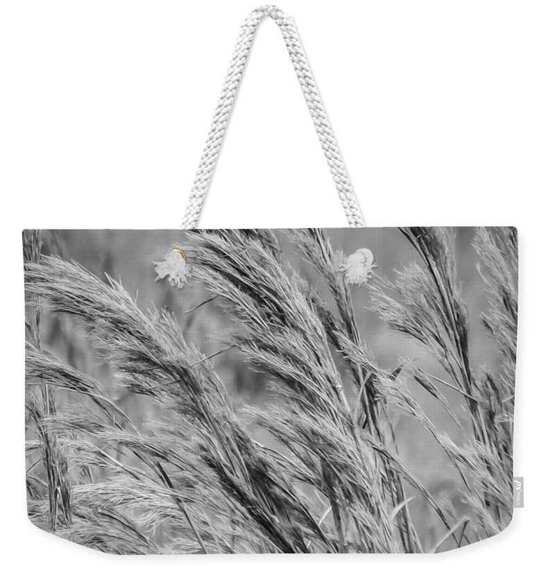 Field Weekender Tote Bag featuring the photograph Springtime In The Field - Bw by Carolyn Marshall