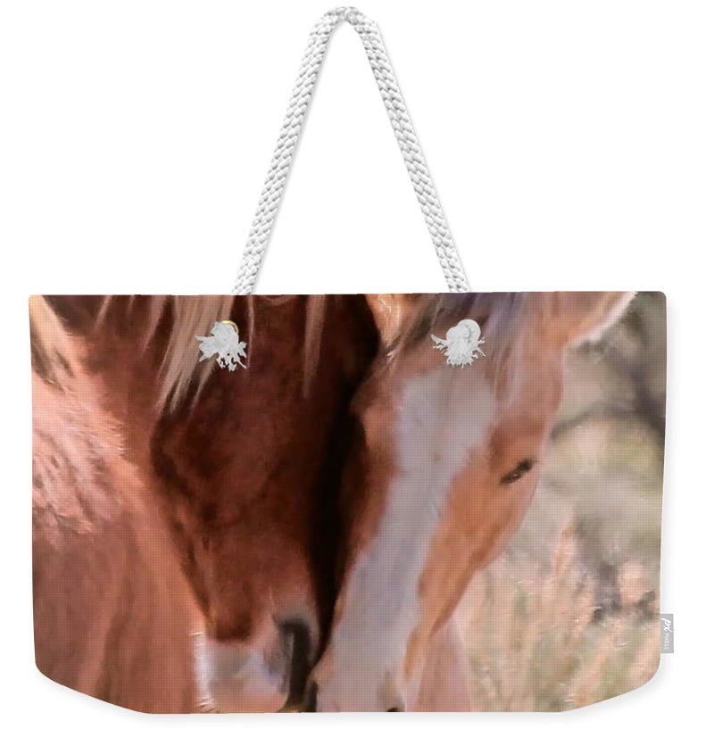 Horses Weekender Tote Bag featuring the photograph Springtime Love II by Athena Mckinzie