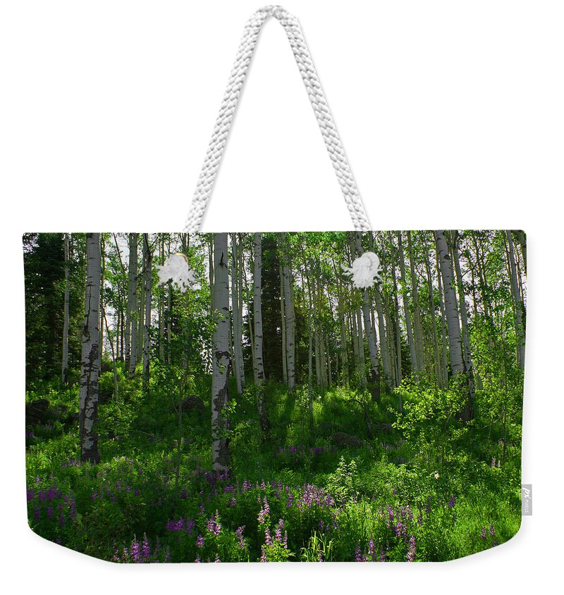 Aspens Weekender Tote Bag featuring the photograph Springtime On The Grand Mesa by Ernie Echols