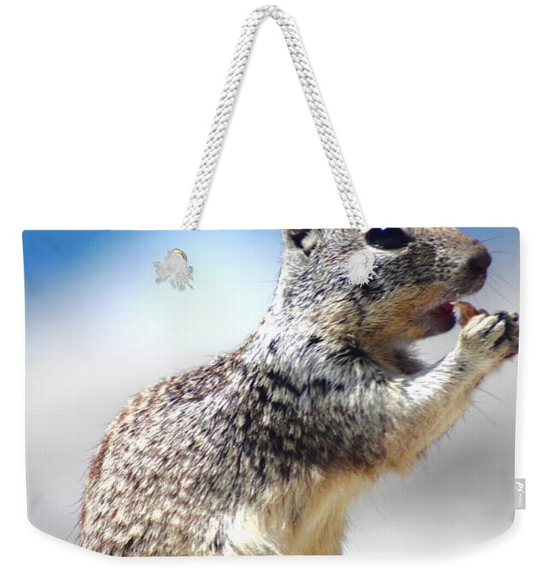 Hungry Ground Squirrel Weekender Tote Bag featuring the photograph Squirrel Enjoying Lunch On The Beach by Richard Cheski