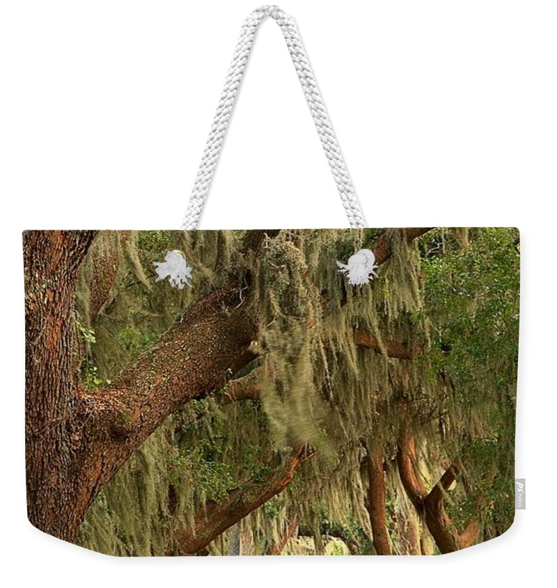 Avenue Of The Oaks Weekender Tote Bag featuring the photograph St Simons Island Oaks by Adam Jewell