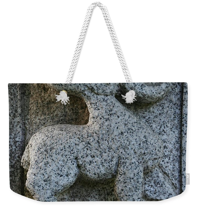 Garden Art Weekender Tote Bag featuring the photograph Stag by Susan Herber