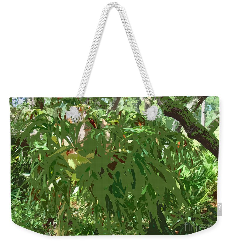 Staghorn Weekender Tote Bag featuring the photograph Staghorn Cutout by Nancy L Marshall