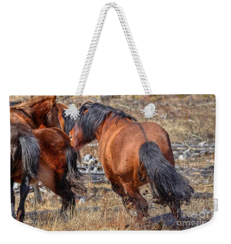Wild Horse Weekender Tote Bag featuring the photograph Stallions Gone Crazy by James Anderson