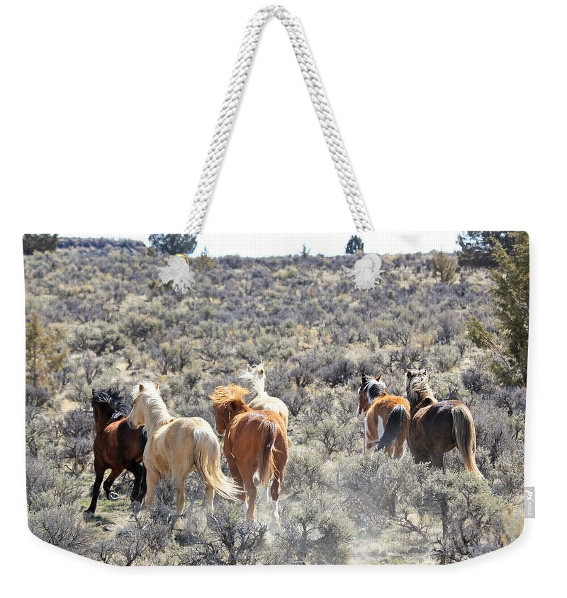 Horses Weekender Tote Bag featuring the photograph Stampede Of Wild Horses by Athena Mckinzie